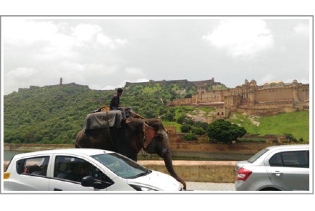 .. dove è ancora in uso andare sull'elefante!