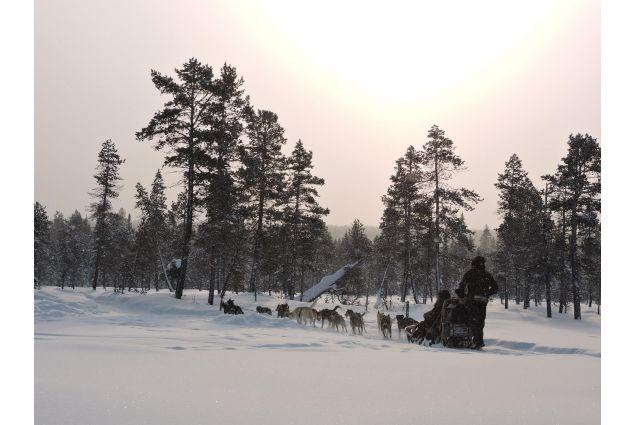 Siti di incontri in inglese in Svezia