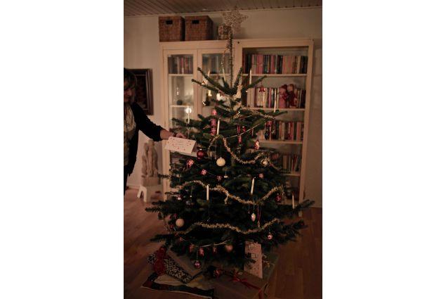 L'albero di Natale danese
