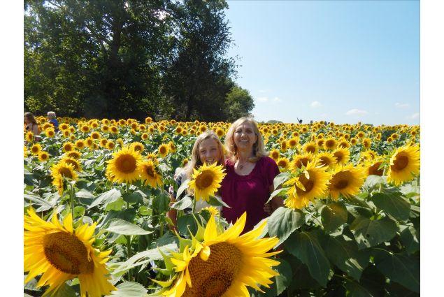 Con la mamma in un campo di girasoli, fiore simbolo del Kansas