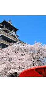 Giappone - Paesi - Intercultura 64ea7b7d0de