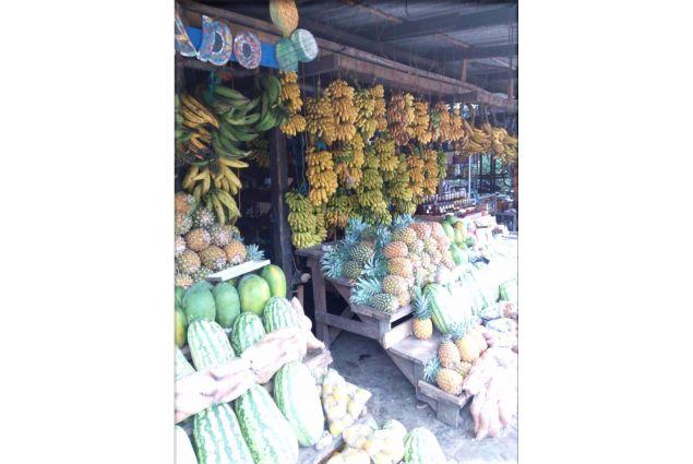 Alla scoperta dell'abbondanza della frutta tropicale