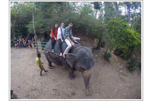 In Kerala Jacopo ha cavalcato un elefante!